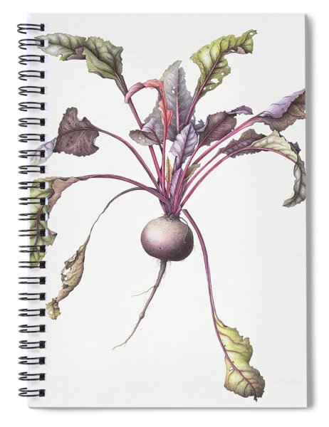 Beetroot Spiral Notebook