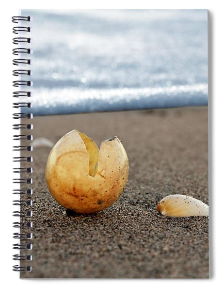 Beginnings Spiral Notebook