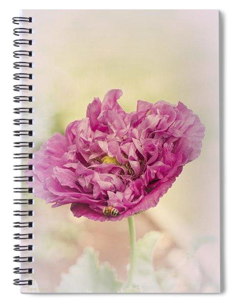 Belinda Spiral Notebook