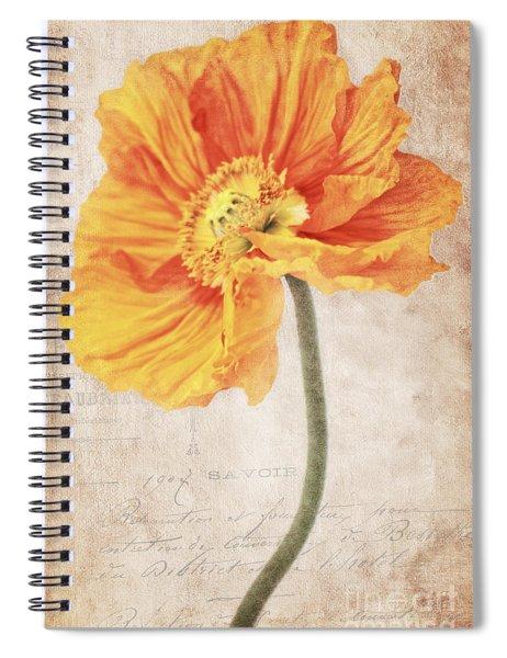 Bella Orange Spiral Notebook
