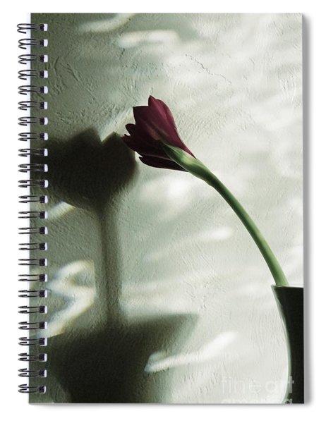Belle Ombre Spiral Notebook