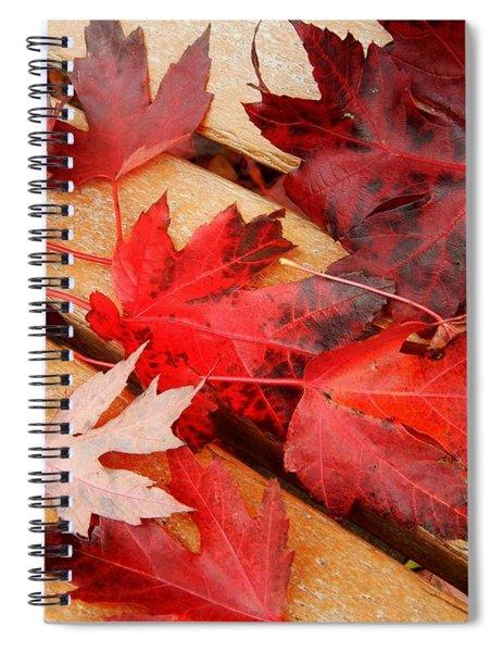 Bench Cushion Spiral Notebook