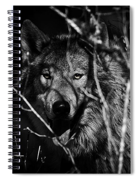 Beware The Woods Spiral Notebook