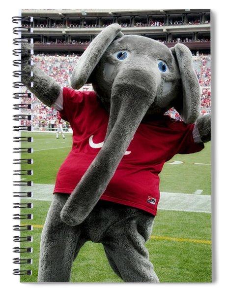 Big Al Spiral Notebook