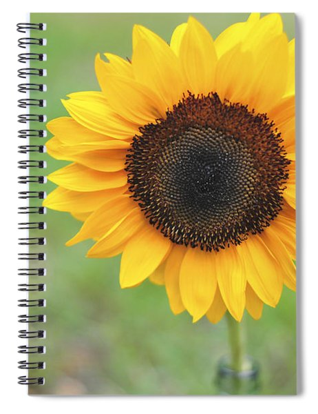 Big Bright Yellow Colorful Sunflower Art Print Spiral Notebook