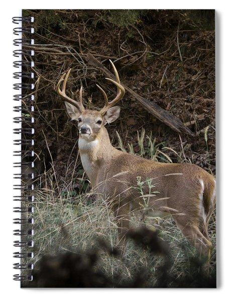 Big Buck Spiral Notebook