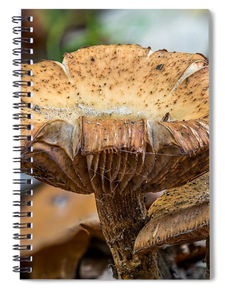 Big Shroom Spiral Notebook