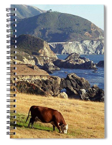 Big Sur Cow Spiral Notebook