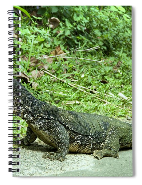 Big Waran On Sri Lanka Spiral Notebook