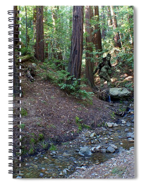 Bigfoot On Mt. Tamalpais Spiral Notebook