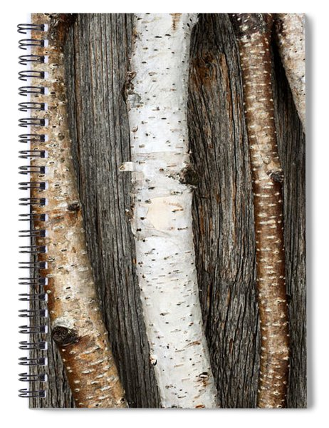 Birch Trunks Spiral Notebook