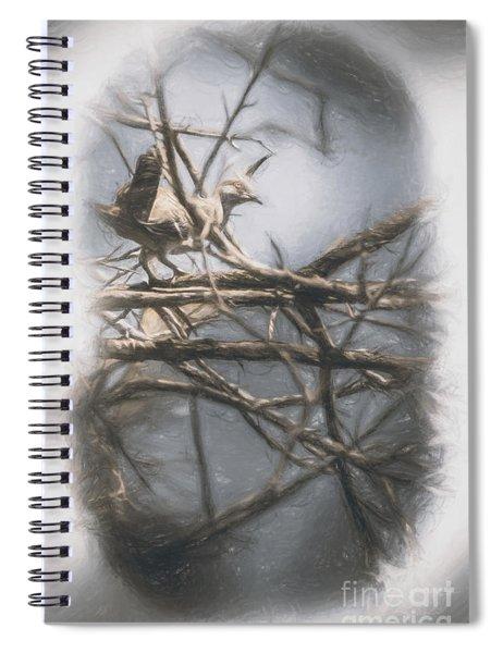 Bird From Woodslost Way Spiral Notebook