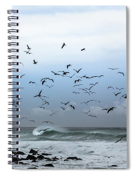 Birds Fly Spiral Notebook