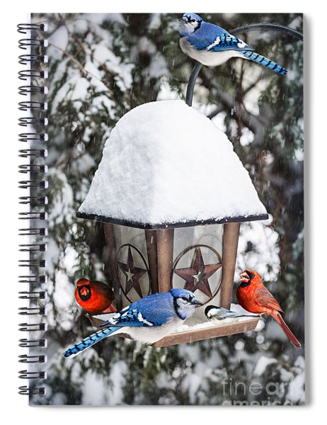 Birds On Bird Feeder In Winter Spiral Notebook