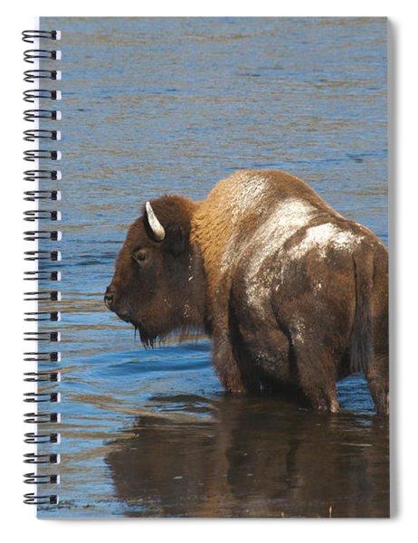 Bison Crossing River Spiral Notebook