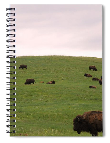 Bison Herd Spiral Notebook