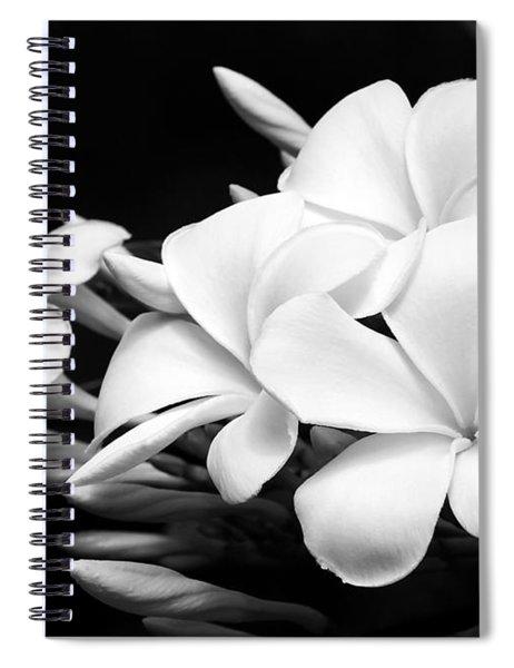 Black And White Lightning Spiral Notebook