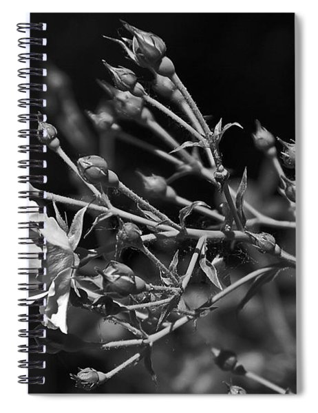 Black And White Rose Spiral Notebook