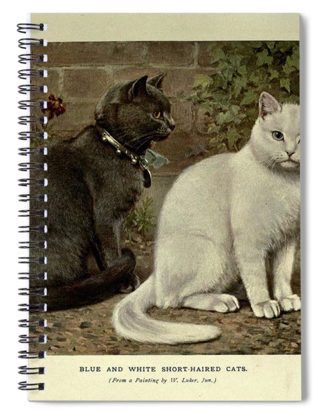 Black And White Short-haired Cats Spiral Notebook