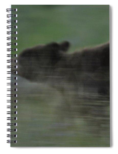 Black Bear Cub Spiral Notebook