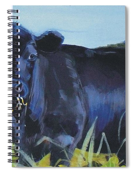 Cows Dartmoor Spiral Notebook