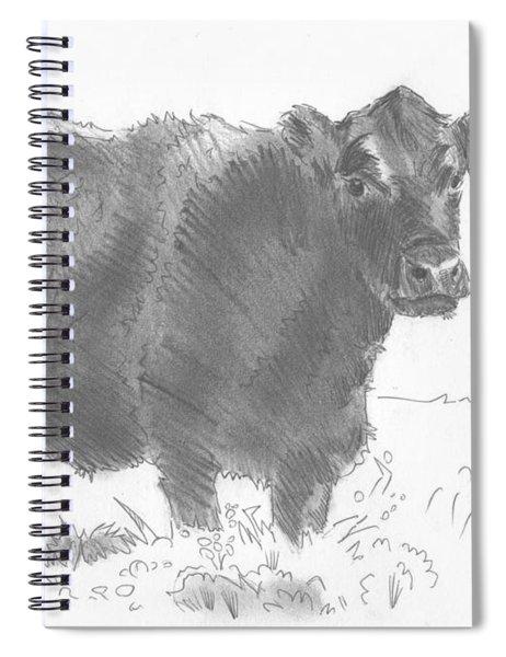 Black Cow Pencil Sketch Spiral Notebook