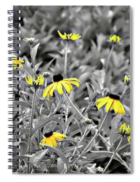 Black-eyed Susan Field Spiral Notebook