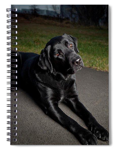 Black Labrador Retriever Lying Down Spiral Notebook