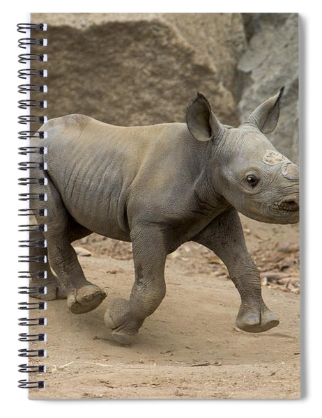 Black Rhinoceros Calf Running Spiral Notebook