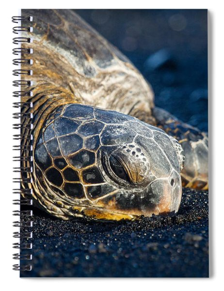 Black Sand Nap Spiral Notebook