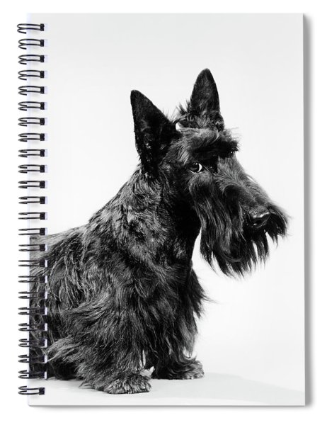 Black Scottie Scottish Terrier Dog Spiral Notebook