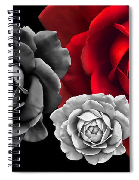 Black White Red Roses Abstract Spiral Notebook