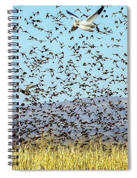 Blackbirds And Geese Spiral Notebook
