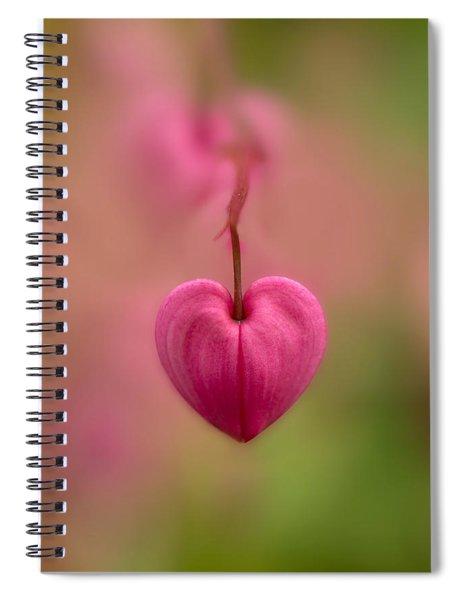 Bleeding Heart Flower Spiral Notebook