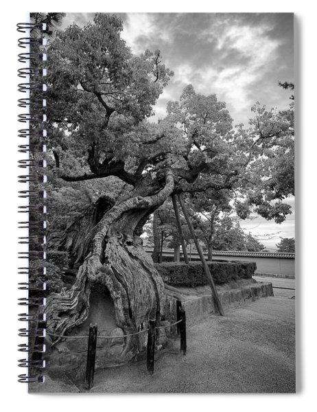Blessed Tree Of Horyuji Temple - Japan Spiral Notebook