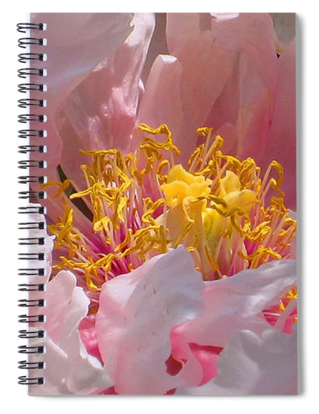 Blessings And Blossoms  Spiral Notebook