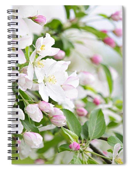 Blooming Apple Tree Spiral Notebook