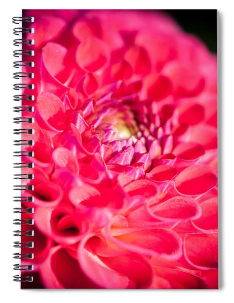 Blooming Red Flower Spiral Notebook by John Wadleigh