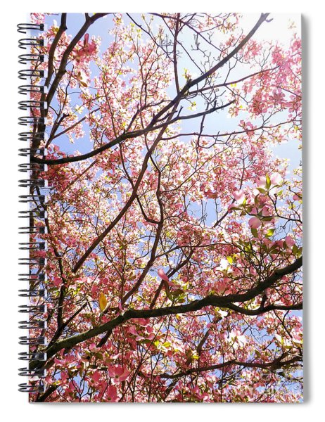 Blossoming Pink Spiral Notebook