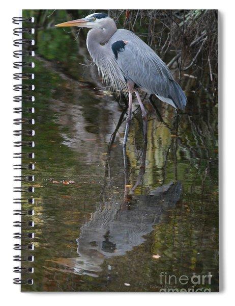 Blue 1212 Spiral Notebook