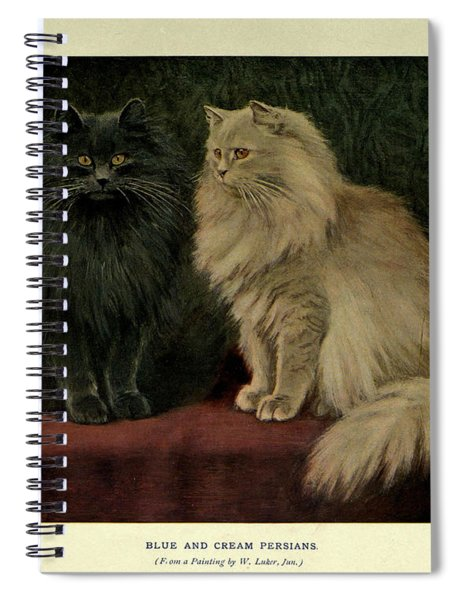 Blue And Cream Persians Spiral Notebook