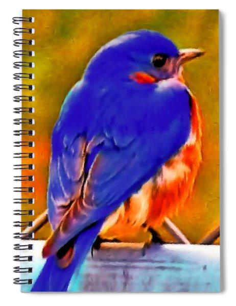 Blue Beauty 2013 Spiral Notebook