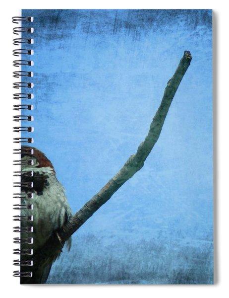 Sparrow On Blue Spiral Notebook