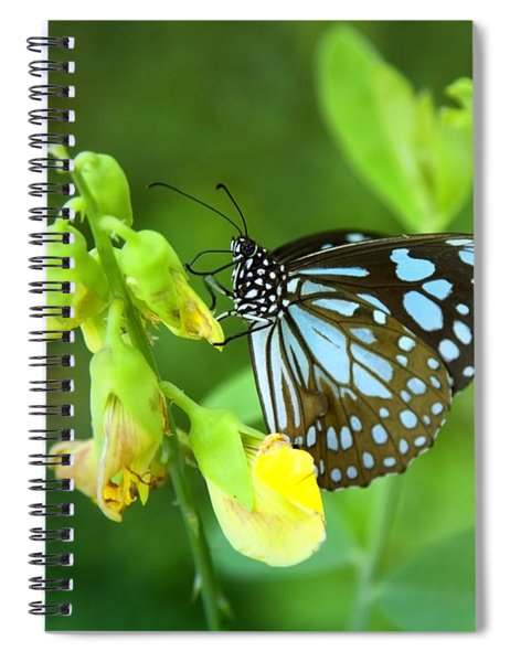 Blue Butterfly In The Green Garden Spiral Notebook