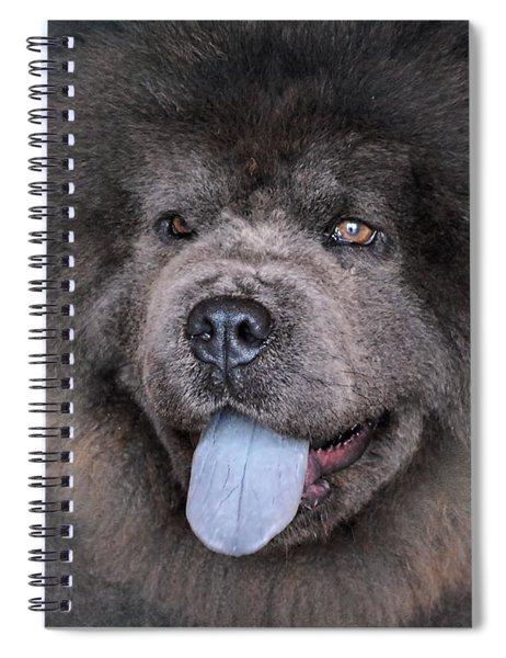 Blue Chow Chow Spiral Notebook