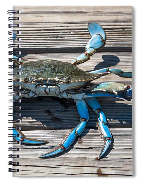 Blue Crab Pincher Spiral Notebook