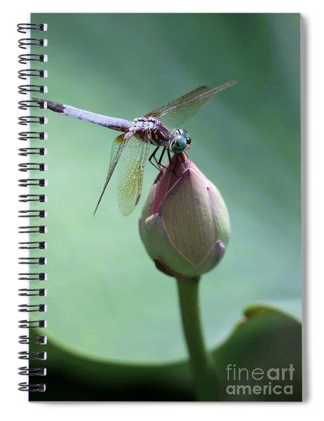 Blue Dragonflies Love Lotus Buds Spiral Notebook