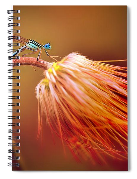 Blue Dragonfly On A Dry Flower Spiral Notebook