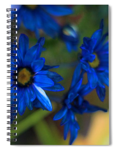 Blue Dyed Daisies  Spiral Notebook