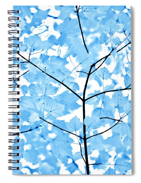 Blue Leaves Melody Spiral Notebook